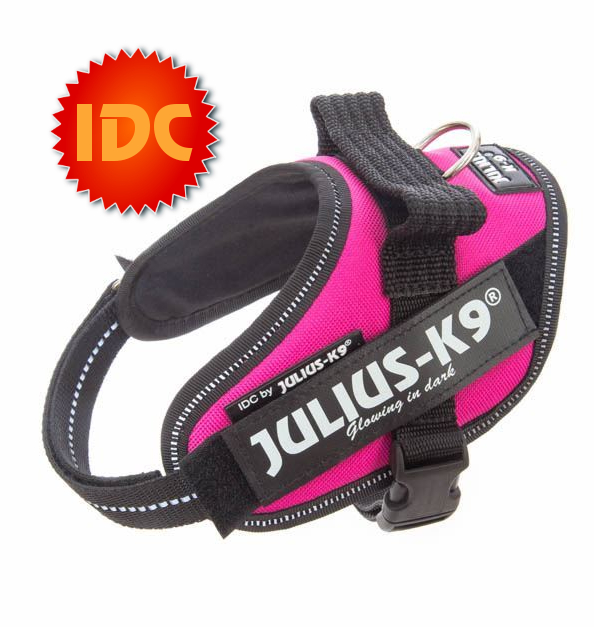 julius-k9-harness-idc-size-mini-mini-dark-pink-french-bulldog